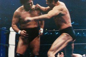 1994年1月4日東京ドーム、アントニオ猪木VS天龍源一郎というミステリー【ぼくらのプロレス物語】